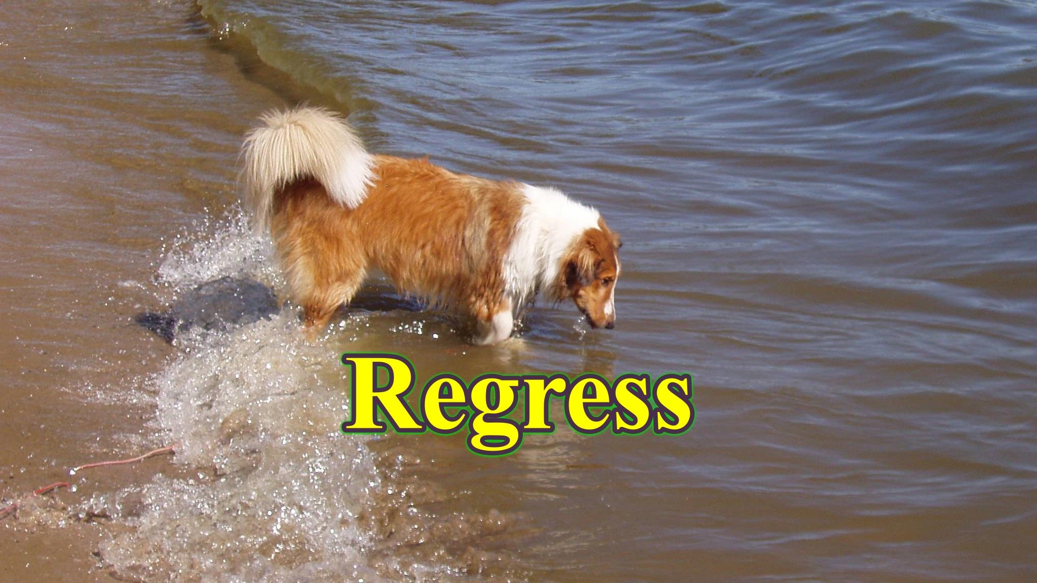 regress - Thống kê ứng dụng trong nghiên cứu thú y